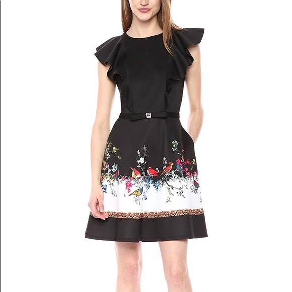 Ted Baker London Dresses & Skirts - Ted Baker shaelin dress. Never worn.
